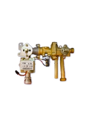 Complete gas/water valve for the Eccotemp L5